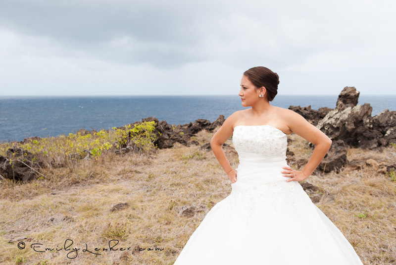 Bride overlooking ocean