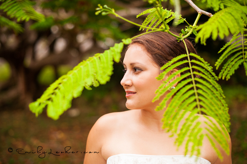 bride in trees