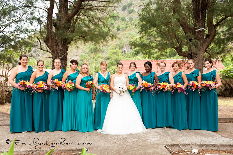 bridesmaids lined up, turquoise dresses, bride with brides maids