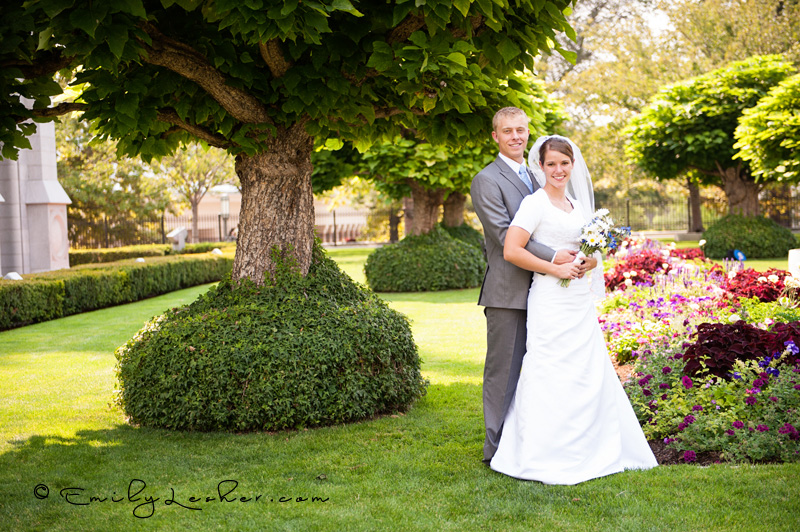 olive tree, green, flowers, bride and groom, salt lake temple