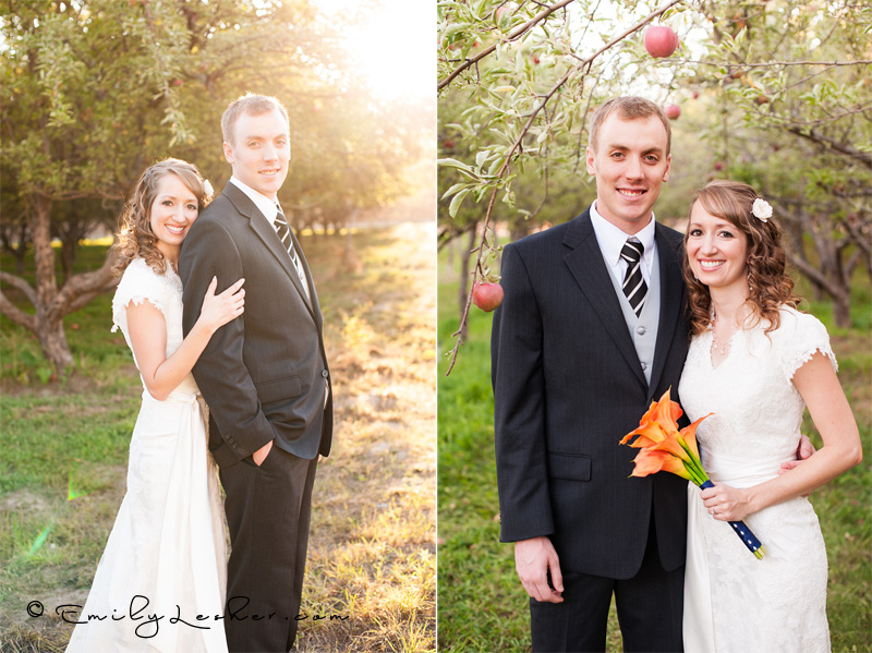 bride and groom in apple orchard