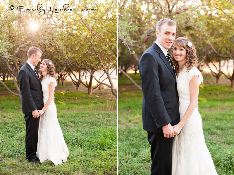 Bride and groom in orchard, sun in trees, apples
