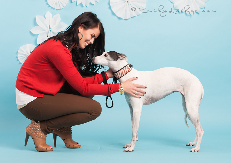 Red sweater, Whippet, dog, white dog, handmade snow flakes